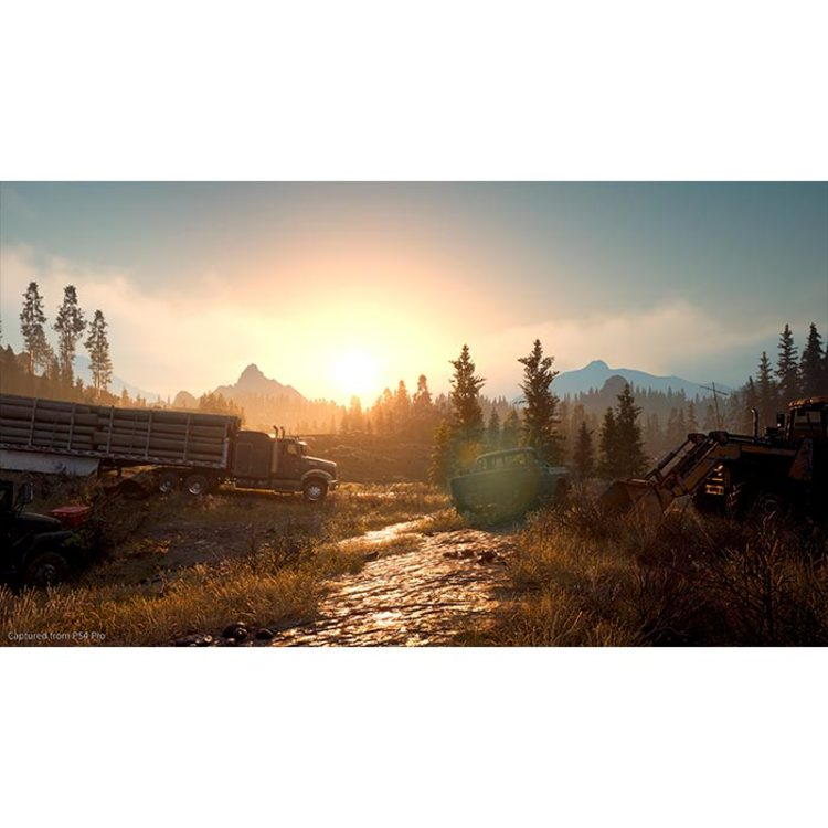 Juego PS4 Days Gone - 6